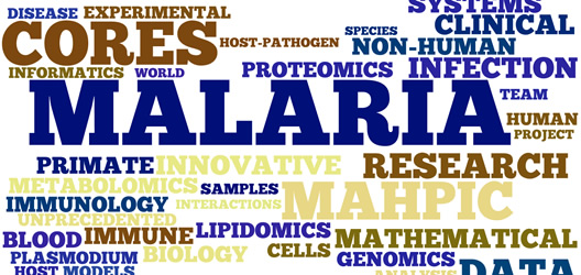 word cloud of MaHPIC research